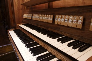 Organo-8